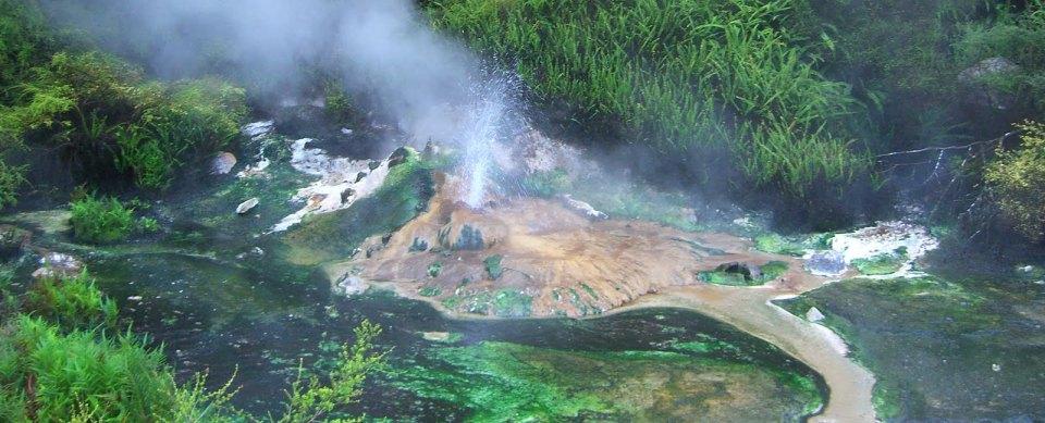 lake-rotomahana-boat-cruise-waimangu-volcanic-valley-rotorua-2