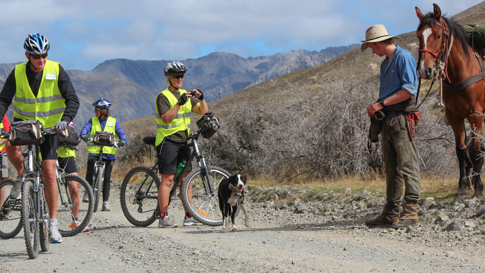 Cyclists meet High Country farmer on Molesworth Station with his working dog & horse