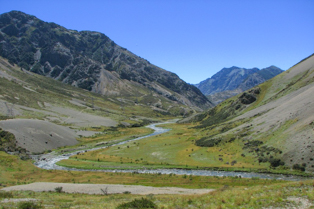 Molesworth station valley with its wild flowers near lake Tennyson