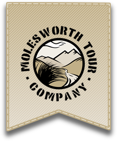 molesworth-tours-blenheim-things-to-do-logo