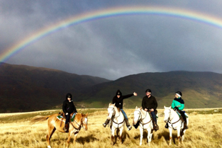 Backcountry-saddles-horse-trekking-in-the-cardrona-valley-menu-1