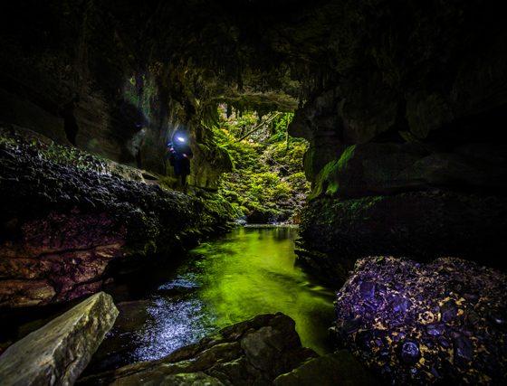 Glowing Adventures Private Tour Waitomo