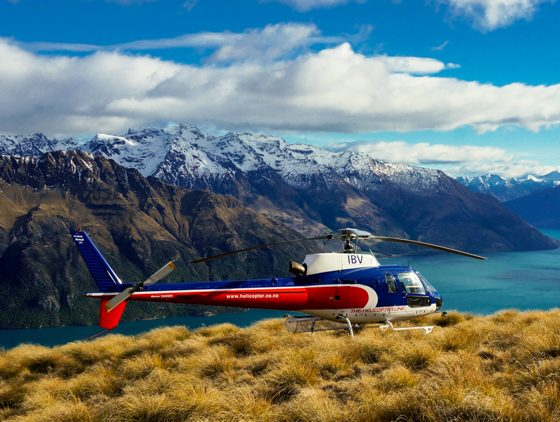 Alpine Helicopter Tours