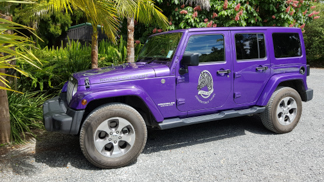 Rogue Pony Bay Of Islands Exclusive Luxury 4wd Guided Tours