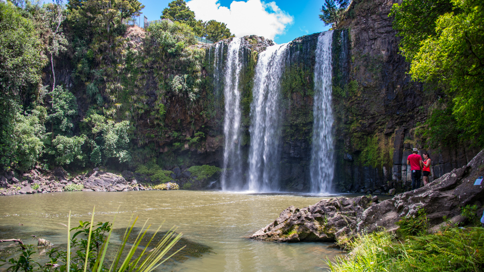 Things To Do In Whangarei