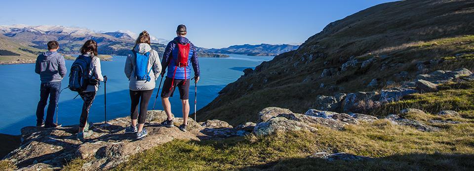 Crater Rim Guided Day Walks Banks Peninsula