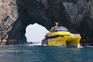 Cruise boat going through Hole in the Rock, Bay of Islands
