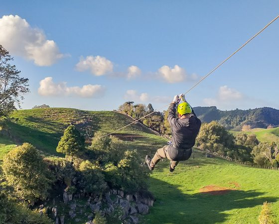 Waitomo Caves Zipline Adventure Park | Must Do New Zealand