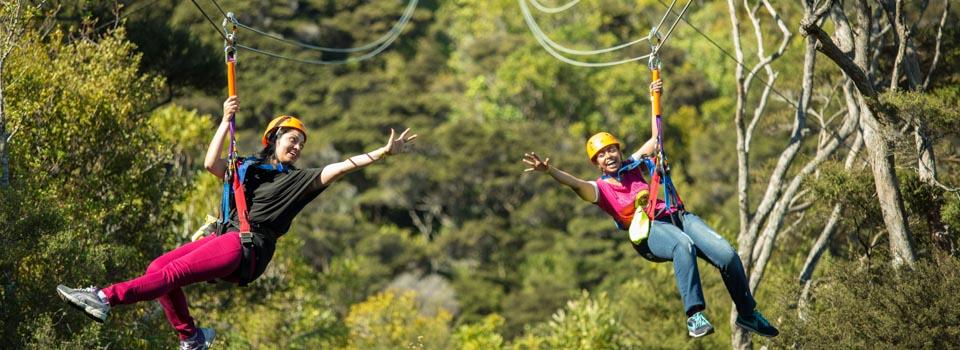 EcoZip Adventures Ziplining on Waiheke Island